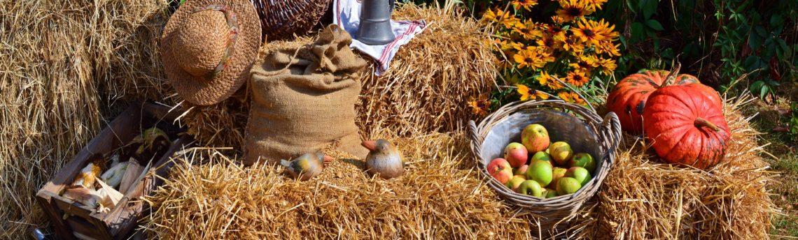 Høstgudstjeneste & Fællesspisning